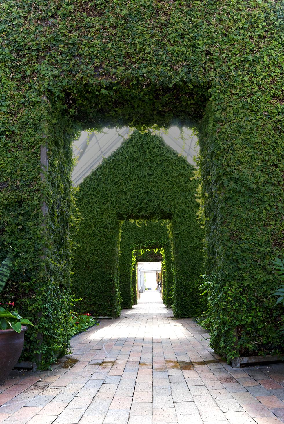 Greenhouse At The Minneapolis Sculpture Garden Interplay Photo Journal